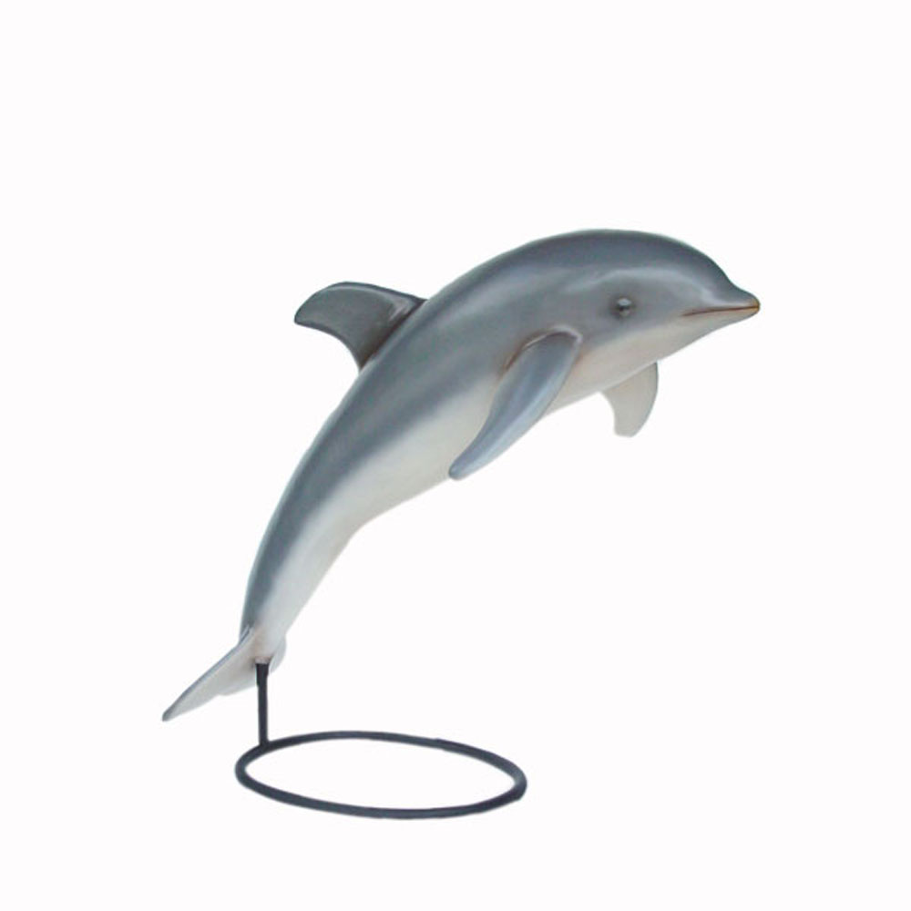 Life-Size Dolphin