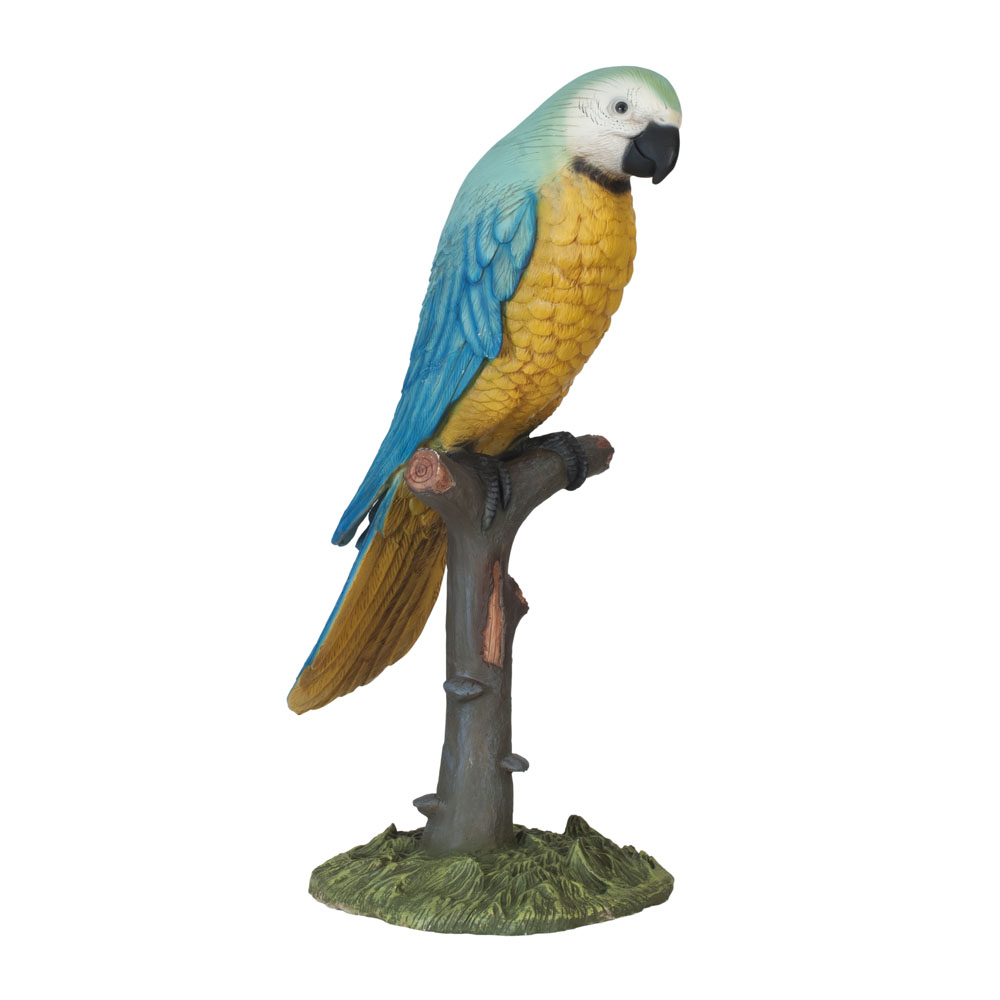 Large Parrot on Tree Stump