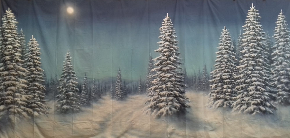 Winter Forest Backdrop 3m x 6m