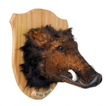 Wall Mounted Boar Head