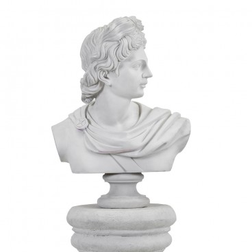 Classical Male Bust White