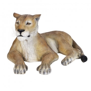 Life-Size Lioness