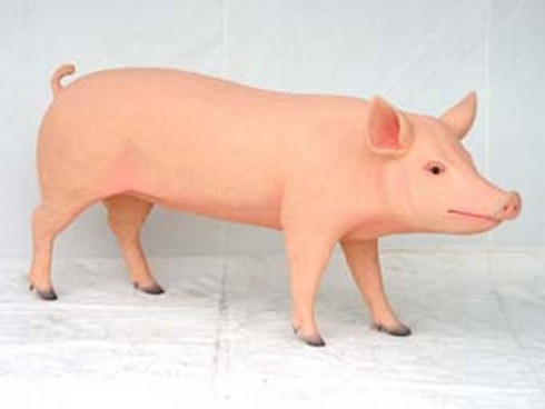 Life-Size Pig
