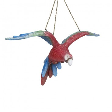 Red Parrot (flying)