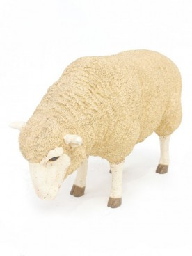 Life-Size Sheep