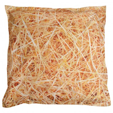Straw Printed Bean Bag