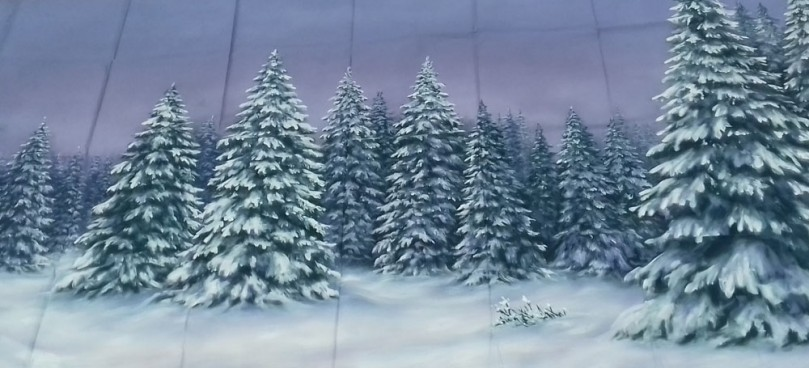 Winter Forest Backdrop 1.6m x 3m