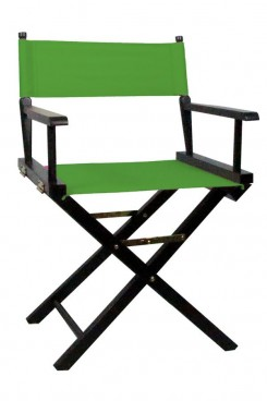 Directors Chair with Green Canvas